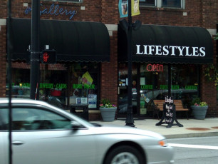 Lifestyles - Window Graphics